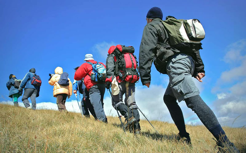 One can book safaris as well as adventure tours to cover incredible places like national parks, sanctuaries, Singalila range etc. in Darjeeling.