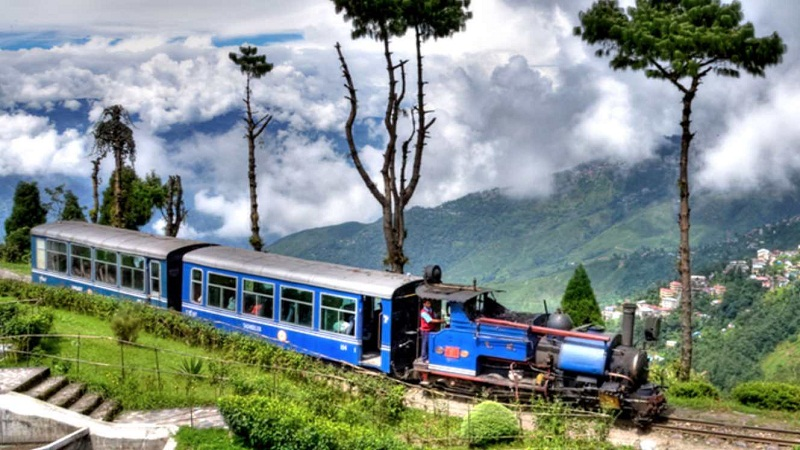 Toy train rides of Darjeeling, which takes one through sparsed tea plantation, are the best means to explore the entire city.