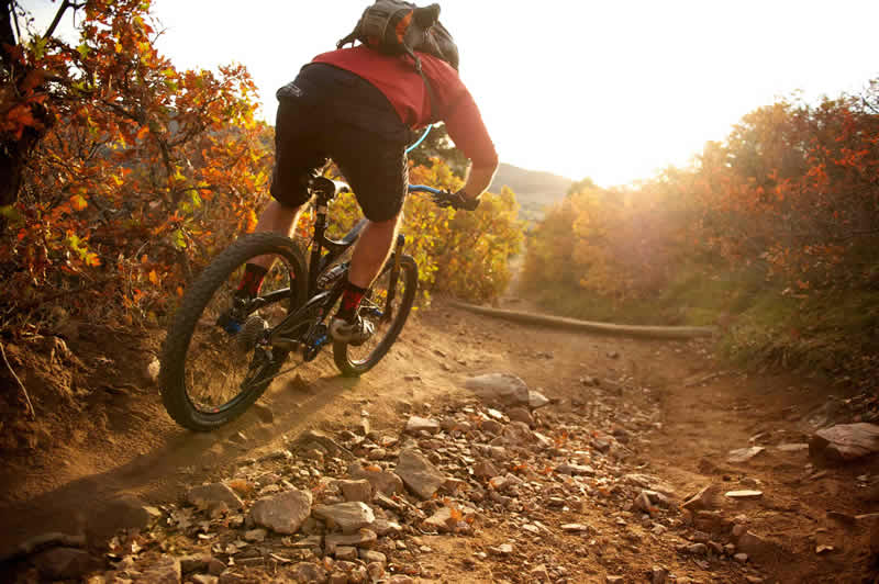 The well-known mountain biking routes in Kalimpong lie in between Kalimpong to Lava, Lava to Loleygaon, Laleygoan to Siliguri via Bagracort and Kalimpong to Peshok are some great biking routes with some perfect view of the mountains around.